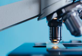 Celulele umane pot sintetiza aurul