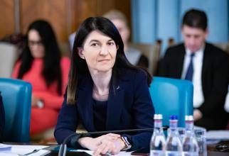 Ministrul demis al Muncii, Violeta Alexandru, afirmă că se va implica personal pentru reducerea duratei de peste un an în stabilirea pensiilor internaţionale pentru români