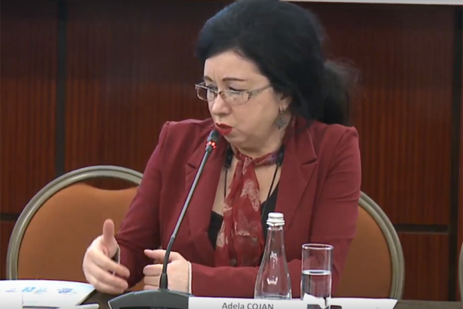 Adela Cojan, președintele CNAS