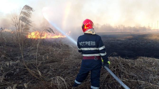 Un nou incendiu în Delta Văcărești