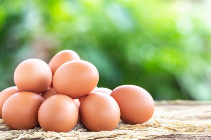 Creşterea cererii pentru ouă în SUA a dus la explozia preţurilor