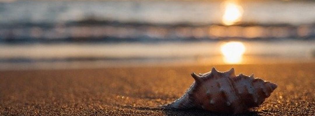 Cu gândul la mare
