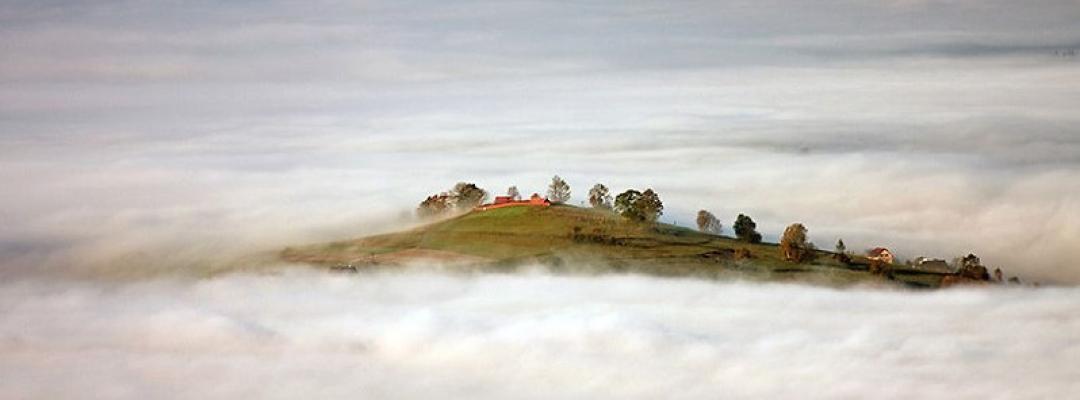 În ceață