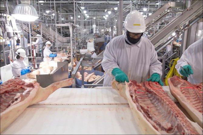 Industria cărnii, lovită puternic de epidemie