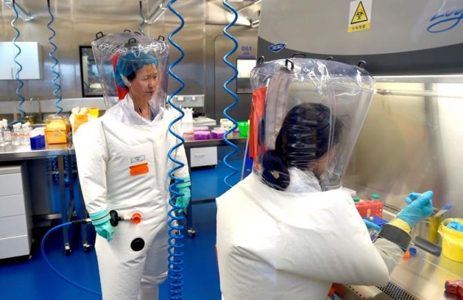 Marea majoritate a oamenilor de știință susțin că virusul este natural