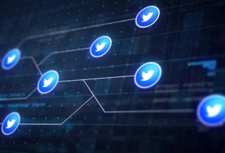 Twitter a șters zeci de mii de conturi