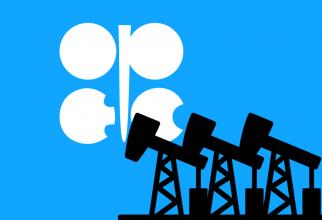 OPEC ăși manifestă optimismul față de consumul de petrol pentru anul viitor