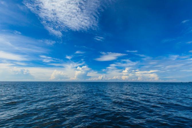 Daune ireversibile. Mările, oceanele și viețuitoarele marine ale Europei sunt în PERICOL