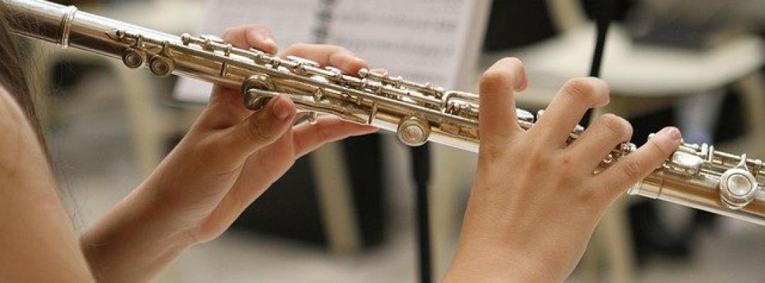 Muzică
