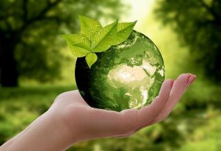 Discuții legate de mediul nostru înconjurător