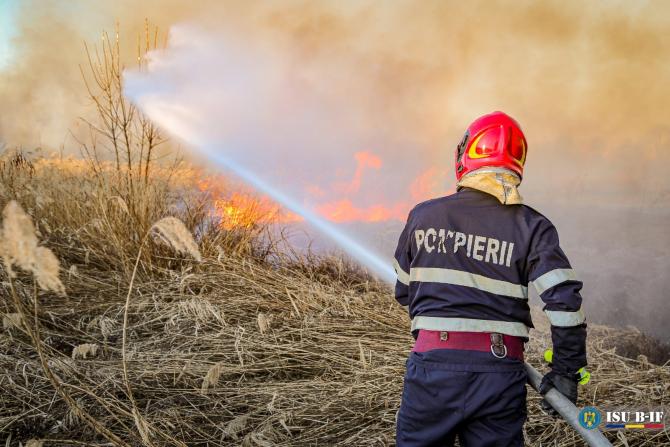 Incendiu la o fostă fermă de porci din Periș