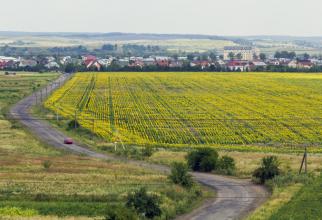 Statul ungar scoate la vânzare 6.300 de parcele de teren