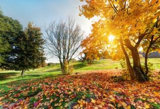 Va fi un octombrie fără precipitații
