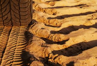 Seceta a distruc culturile agricole
