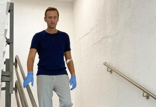 Aleksei Navalnîi: Putin a făcut eforturi de acoperire a acestei fapte