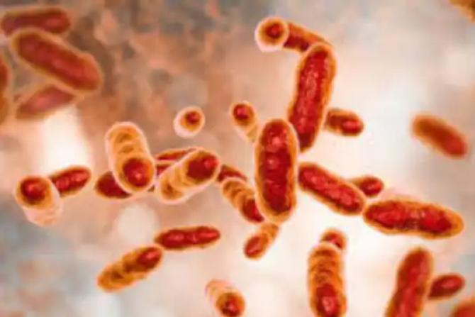 Bacteria a scăpat din nefericire dintr-un laborator