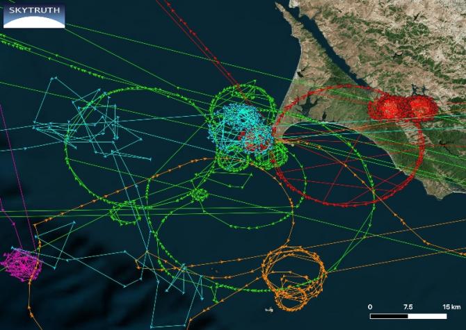 Totul se întâmplă în preajma Point Reyes, lângă San Francisco