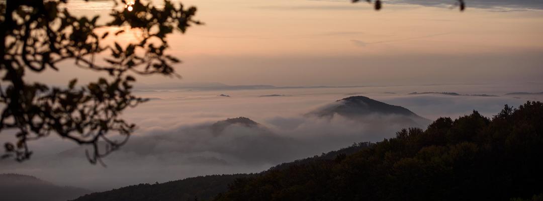 Ceață de toamnă