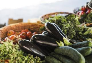 Vicepreşedintele Asociaţiei Legumicultorilor din Maramureş a adăugat că preţul legumelor nu va fi influenţat de condiţiile agro-meteo.