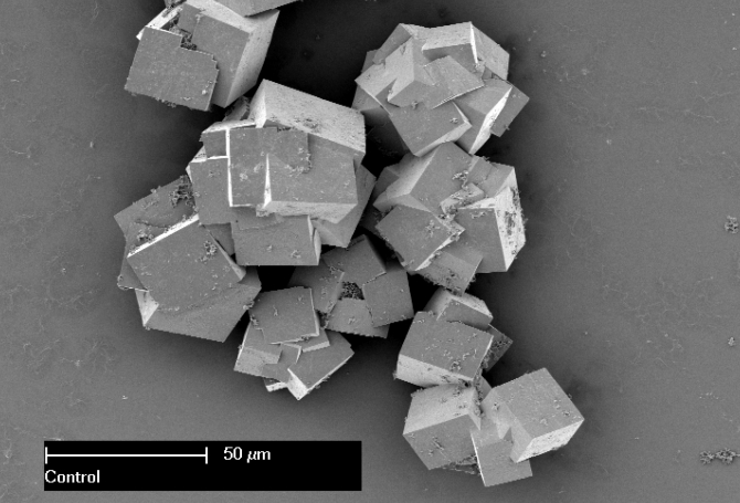 Material compozit, văzut la microscop