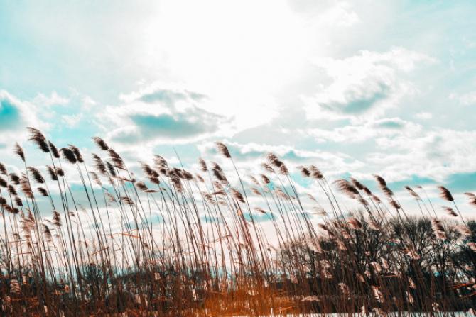 Avertizare ANM: Cod GALBEN de vânt