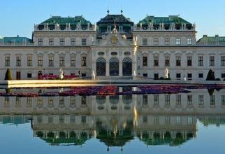 COVID-19: Viena, primul oraș din UE care va vaccina și femeile însărcinate