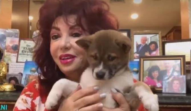 Carmen Harra și-a cumparat un animal de companie de 7000 de dolari