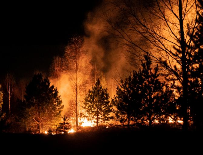 După multe ore de luptă cu flăcările, focul a fost stins