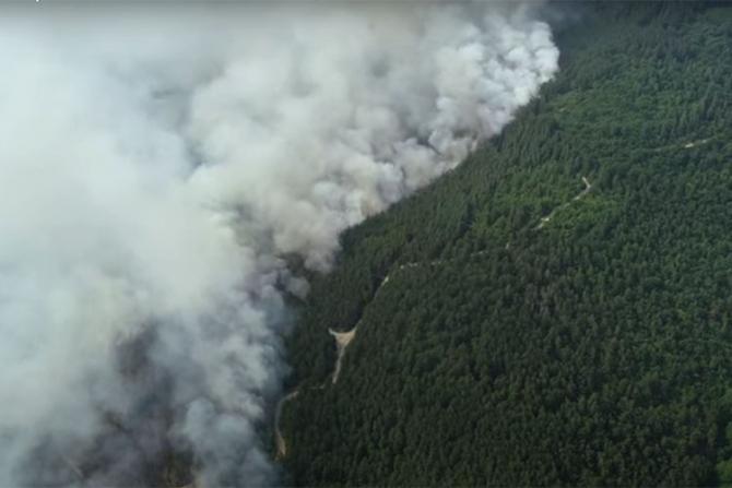 INcendii de pădure în Bulgaria din cauza caniculei