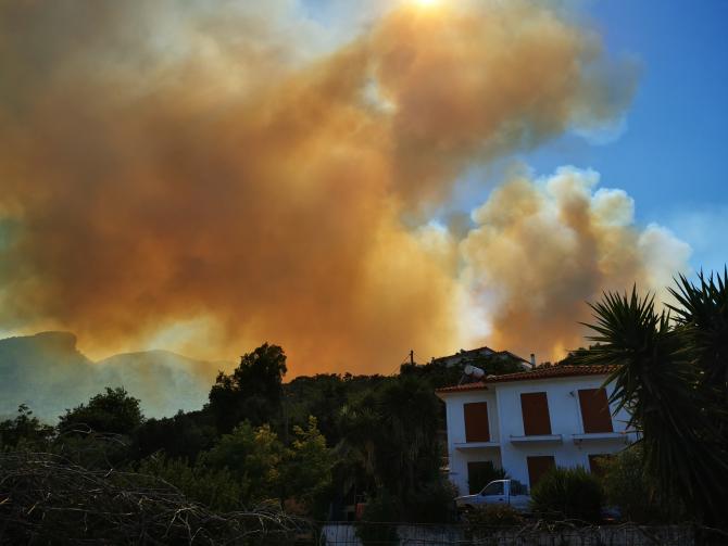 În total, 51 de incendii de pădure şi de vegetaţie au fost raportate în ultimele 24 ore