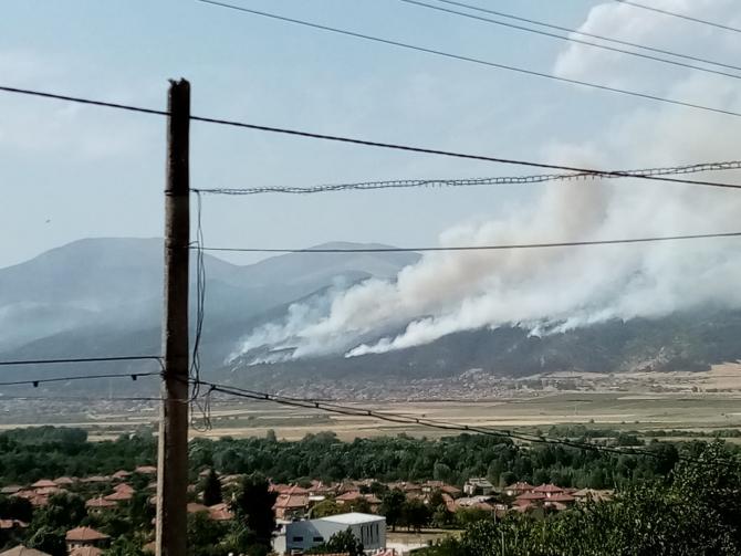 Bulgaria se confruntă cu incendii de pădure