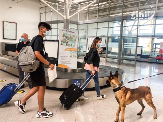 La Sibiu a fost depistat primul bolnav de COVID-19 cu ajutorul unui câine polițist