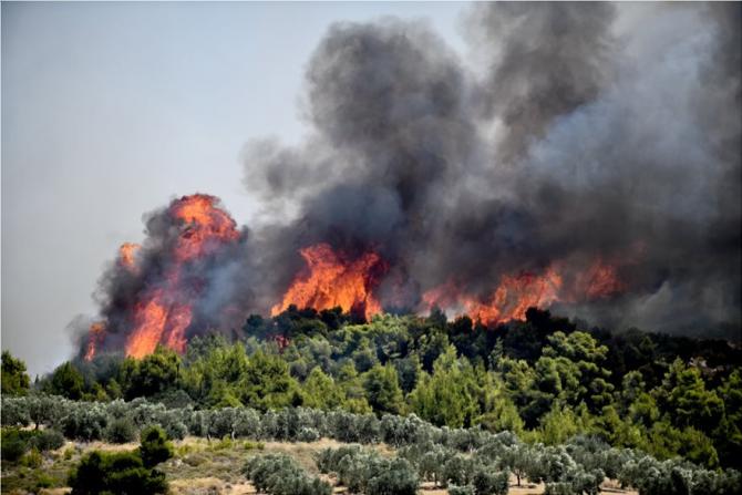 Incendiile fac în continuare ravagii în Grecia