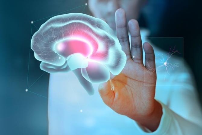 Datele de imagistică cerebrală au fost analizate