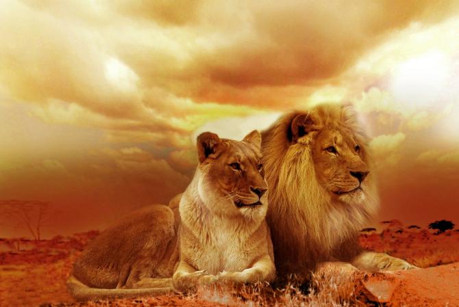Horoscop WEEKEND: Trei zodii au noroc uriaș în DRAGOSTE